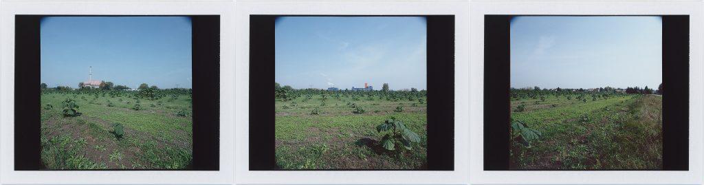Premnitz 2014. Instant Color FujiFilm