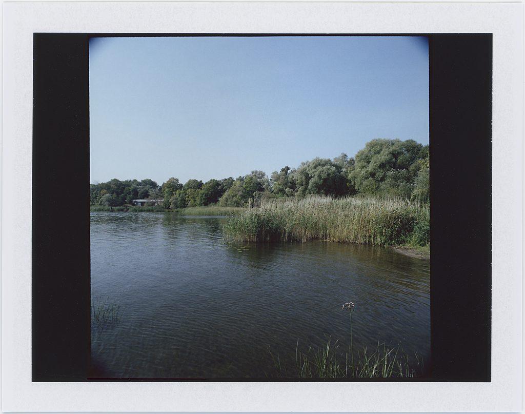 Hohennauener See 2014. Instant Color FujiFilm